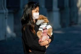 Coronavirus mutato. Nuova epidemia nella Cina del Nord. Diffuso da asintomatici.