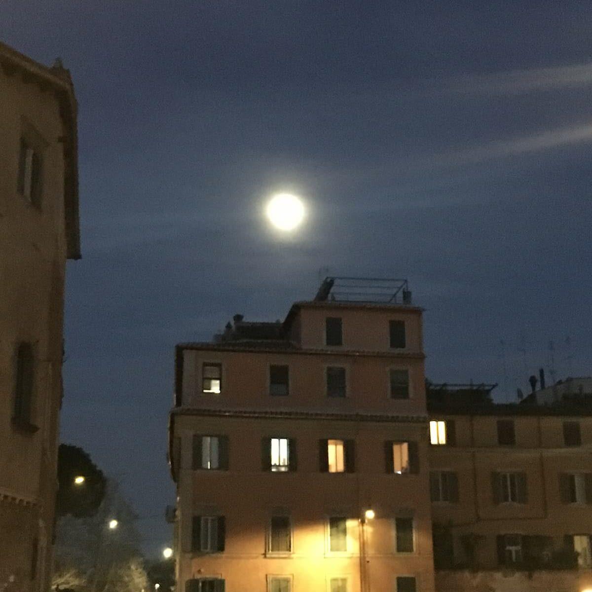 """Amore, che fine ha fatto? """"Col consenso scritto passa la voglia"""". In cielo, c'è la luna piena, abbandonatevi.Ma andate a letto presto, stanotte si dorme un'ora in meno"""